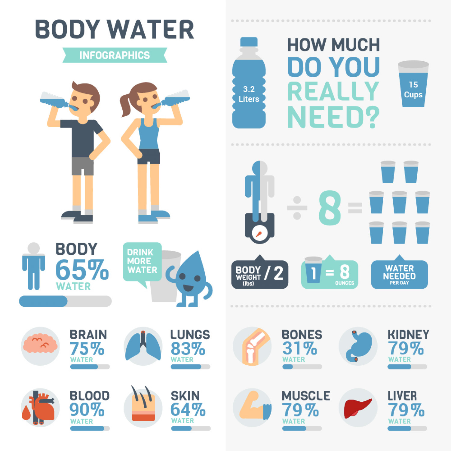 Amount Of Water Present In Our Body