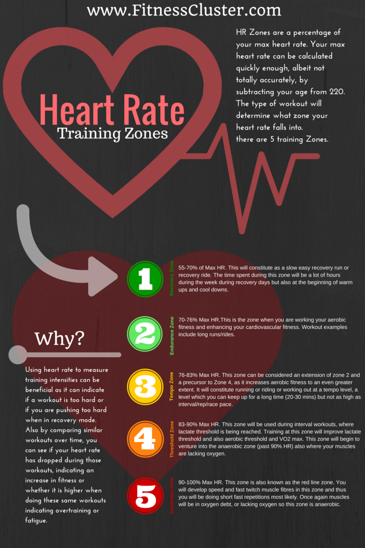 How Fast Should Your Heart Rate Go Up When Exercising