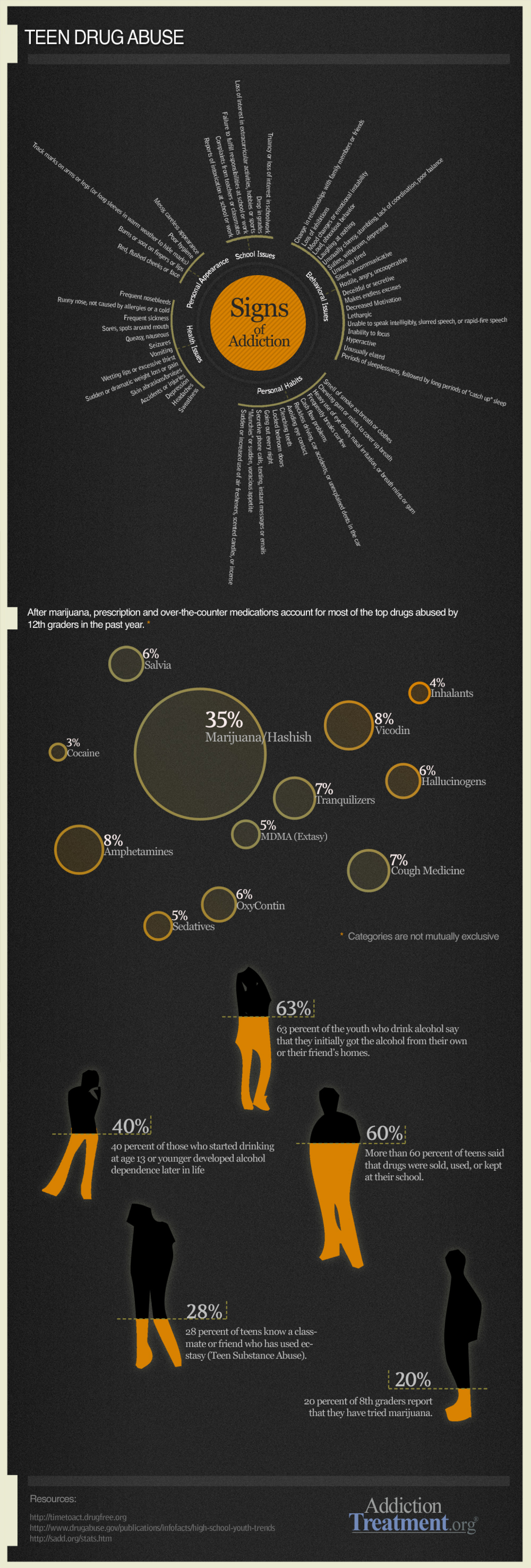 Teen Drug Abuse Infographic