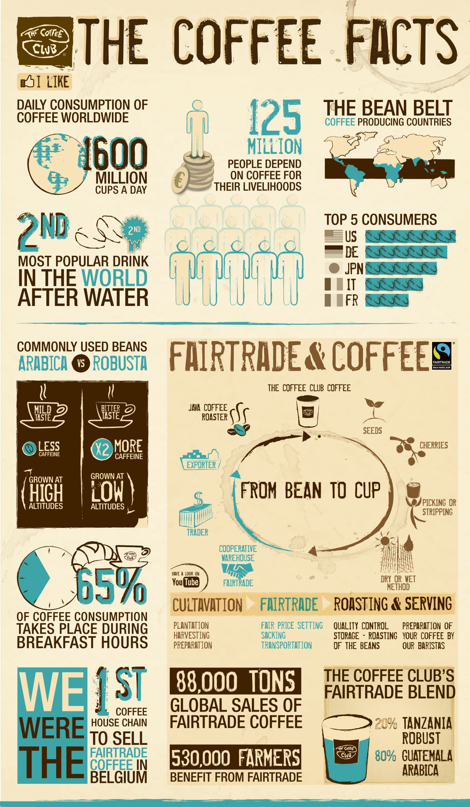 The Coffee Facts By The Coffee Club Belgium