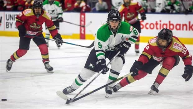 Image result for cwhl