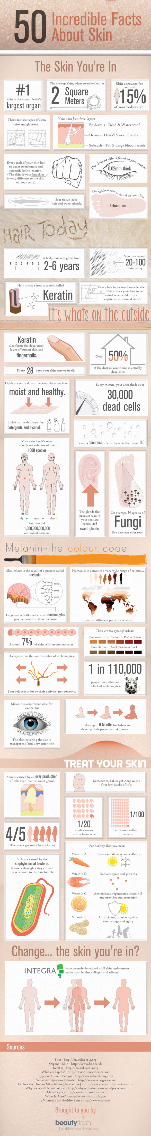 50 Incredible Facts About Skin
