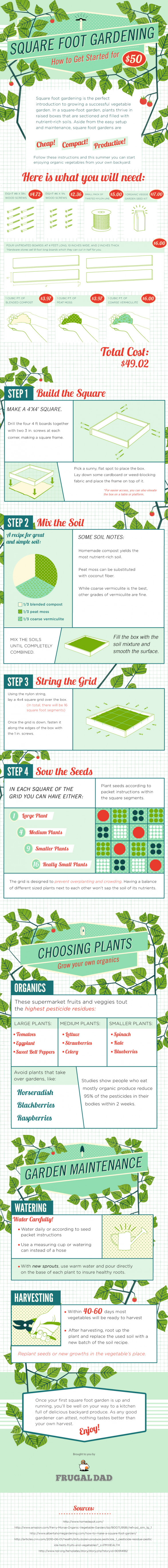 Square Foot Gardening: How to Get Started for $50
