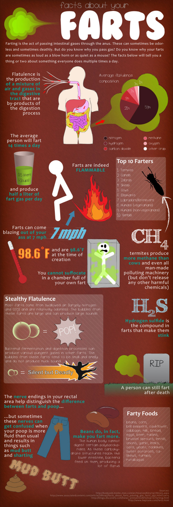 Facts About Your Farts Infographic | RobynsOnlineWorld.com