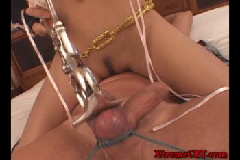 cbt femdom castration