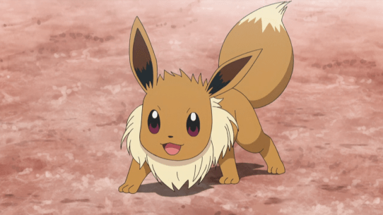 Image result for eevee