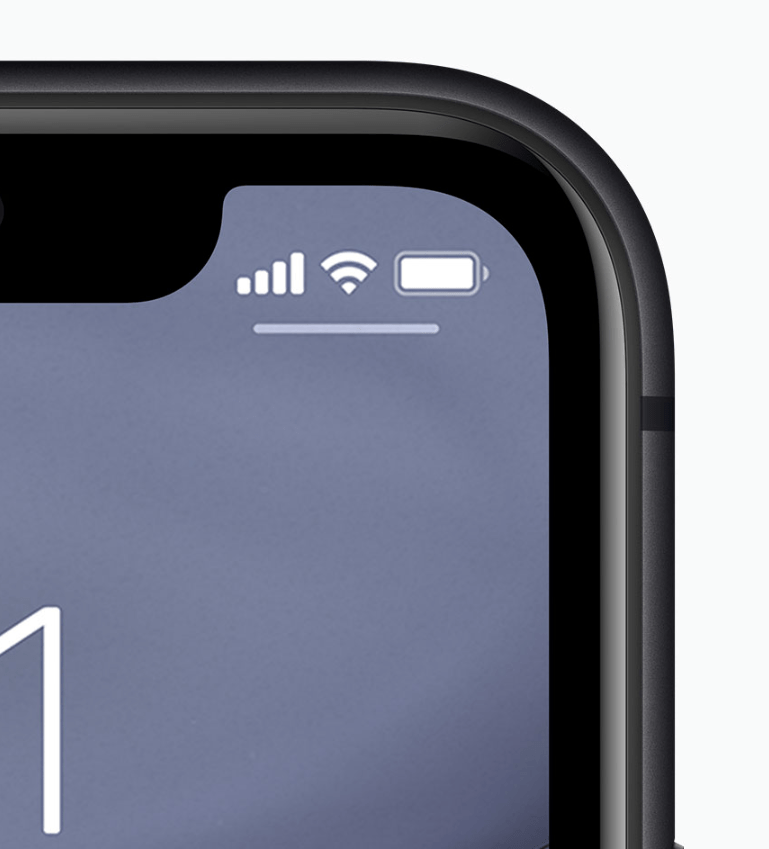 The iPhone 11 (pictured) has an identical display to the iPhone XR