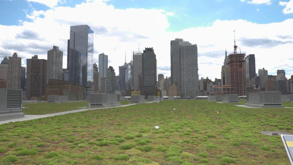 New York City's largest green roof sits atop the Jacob K. Javits Convention Center in Midtown.