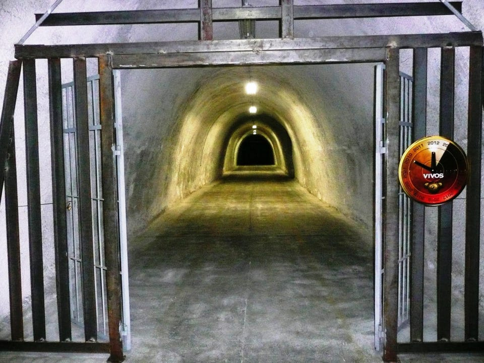 Vivos E1 Secured Storage Tunnel