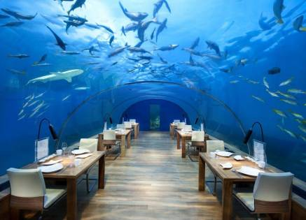 Ithaa Underwater Restaurant at the Conrad Maldives Rangali Underwater Resort