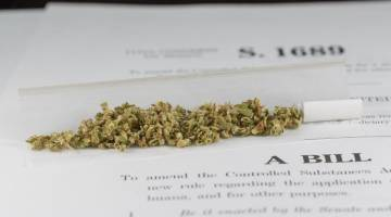 New Congressional Marijuana Bill Is Actually Numbered H.R. 420