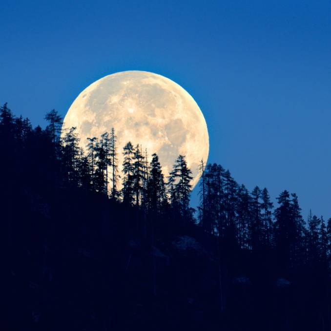 Earth Close To The Sun As A 'Cold Christmas Moon' Rises: What You Can See In The Night Sky This Week – Business Quick Magazine