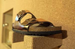 Birkenstock billionaires introduced after German sandal maker agreed to sell for $ 4.7 billion