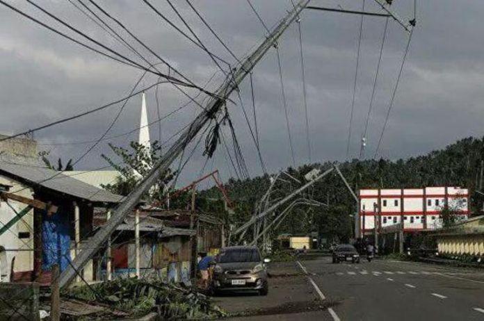 """Результат пошуку зображень за запитом """"ursula taifun"""""""
