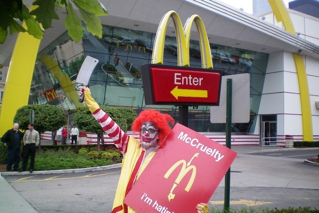 1. Andy Dick protesting at a Chicago McDonald's. The Biggest WTF & Fails From McDonalds — 20 Pics