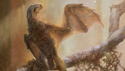 Newly Discovered Bat-Like Dinosaur Reveals the Intricacies of Prehistoric Flight