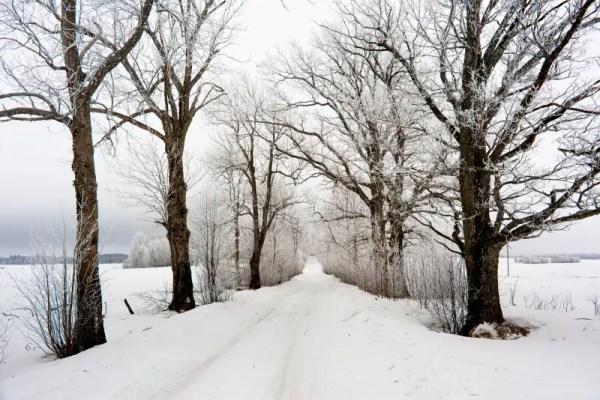 Зима в европе стоковое фото. изображение насчитывающей ...