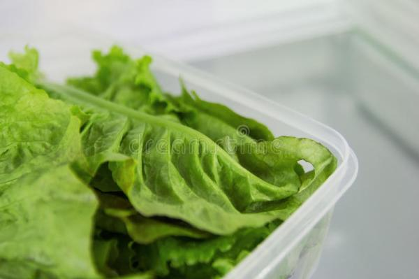 Листья зеленого салата в пластмасовом контейнере на полке ...