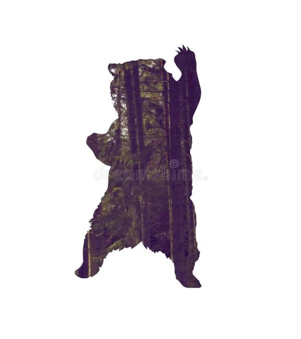 Медведь с сосновым лесом внутри силуэта Стоковое Фото ...
