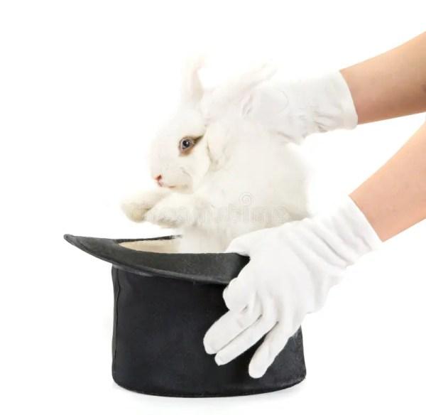 Кролик и черная шляпа стоковое изображение. изображение ...