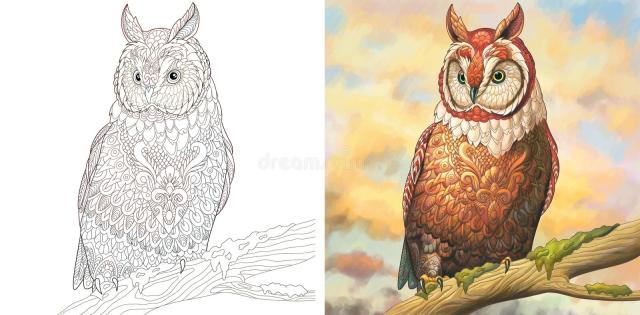 Owl Colouring Page Stock Illustrations – 29 Owl Colouring Page