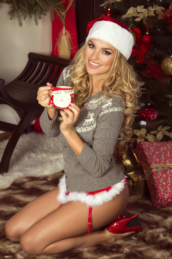Attractive Woman Posing Christmas Stock Image Image Of