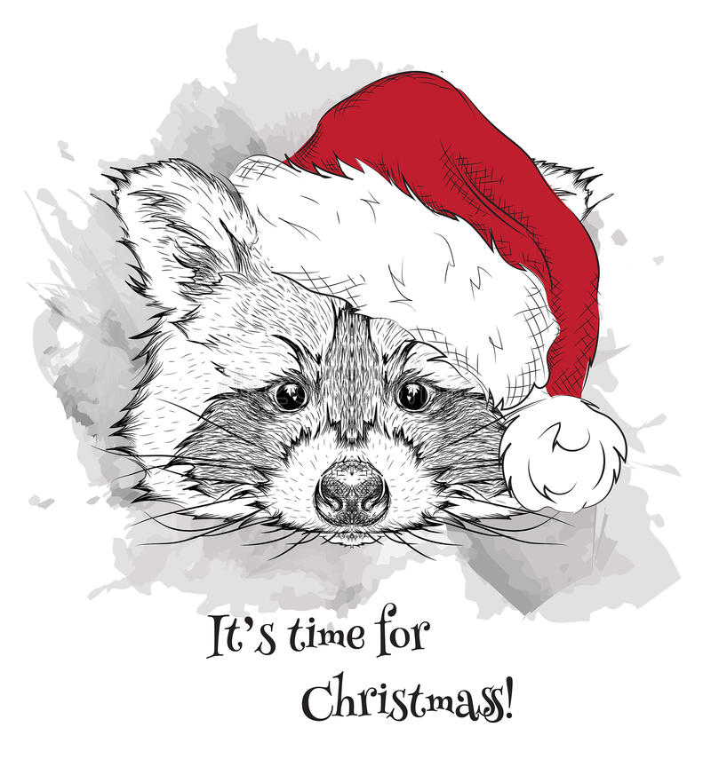 The Christmas Poster With The Image Raccoon Portrait In