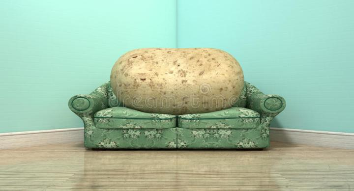 Couch potato sofas for The couch potato furniture