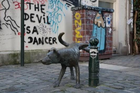 Risultati immagini per bruxelles dog peeing