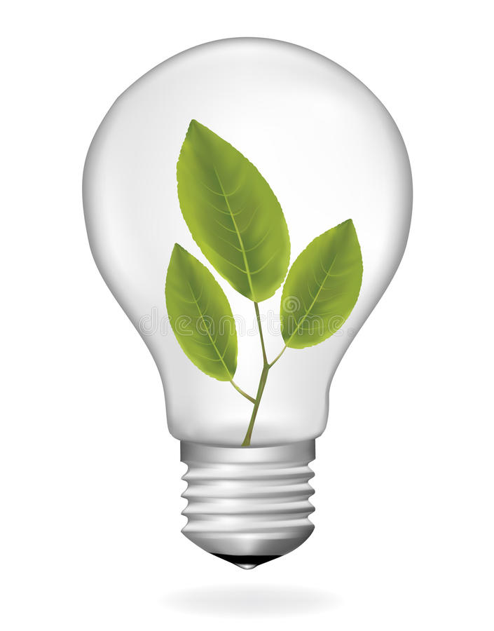 Ecology Light Bulb Vector Stock Vector Illustration Of