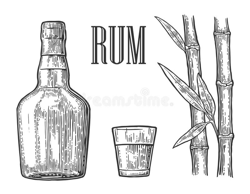 Glass And Bottle Of Rum With Sugar Cane Stock Vector
