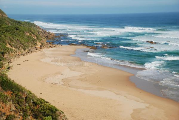 Great Otway National Park Along The Great Ocean Road ...