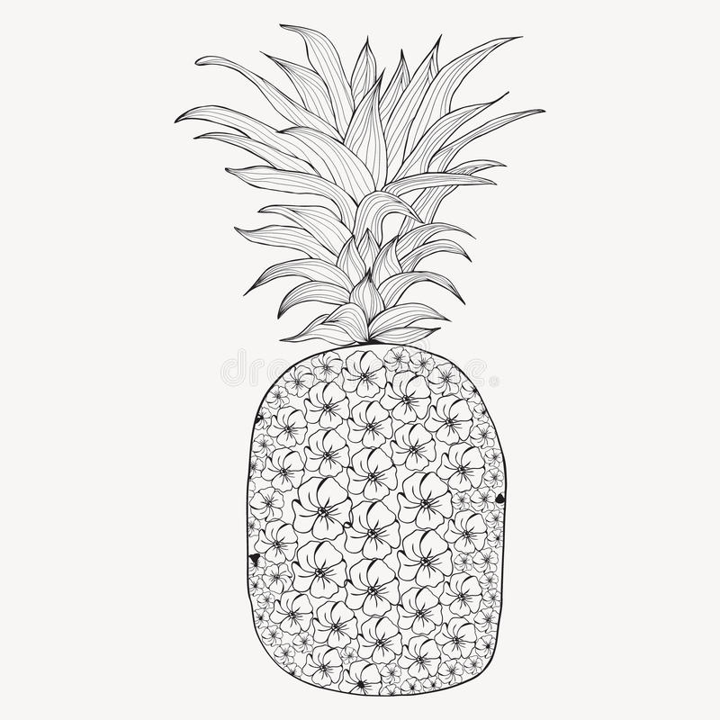 Hand Drawn Pineapple On White Background Stock Vector