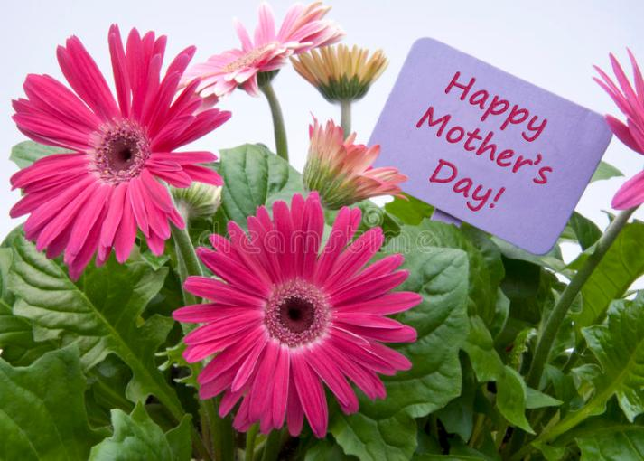 Happy Mothers Day With Flowers Stock Image   Image of flower  blank     Download Happy Mothers Day With Flowers Stock Image   Image of flower   blank  17995539