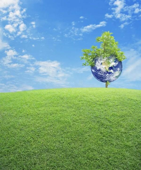 La Terre Avec Le Champ D'arbre Et D'herbe Verte Au-dessus ...