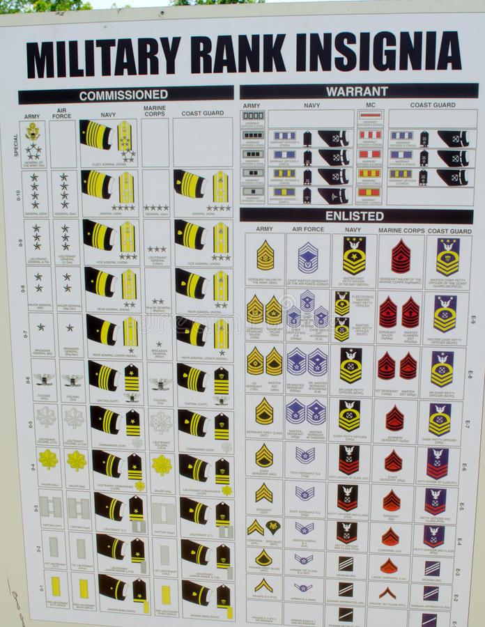 Rank Structure Us Army