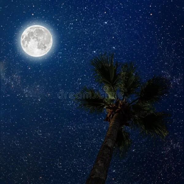 A night sky stock image. Image of hawaii, ocean, natural ...
