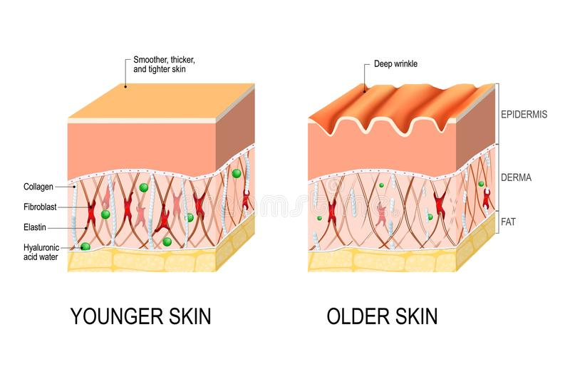 Visual Skin Changes Care