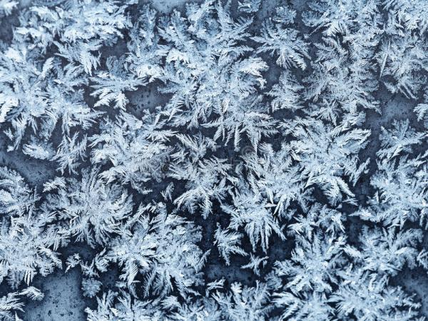 Snowflakes And Frost On Window Pane Close Up Stock Photo ...