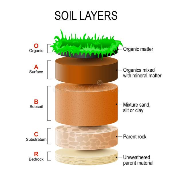 Soil layers stock vector. Illustration of particles, mixed ...