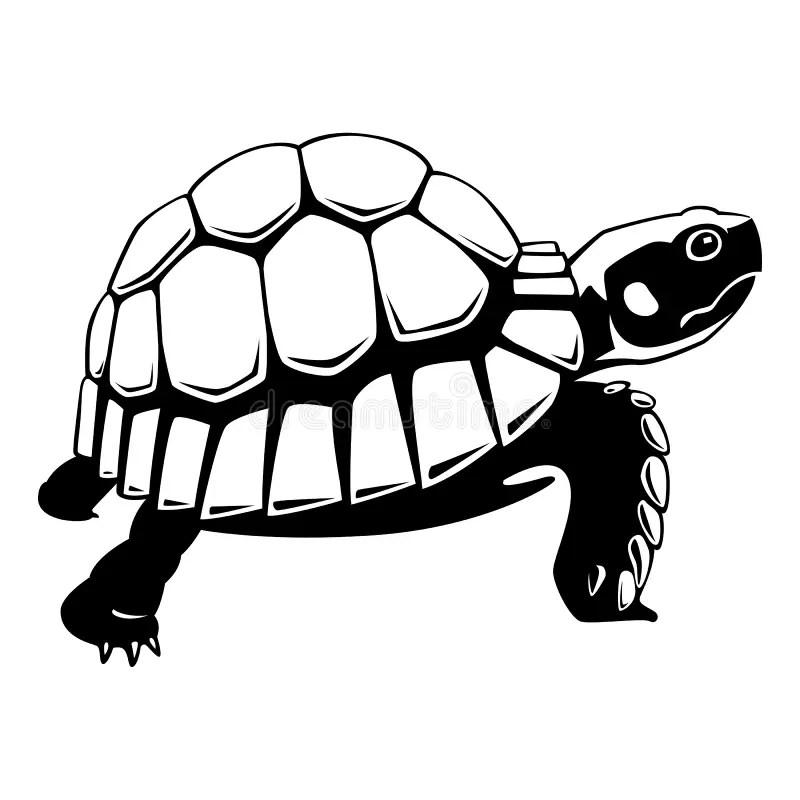 tortue noire graphique sur le fond