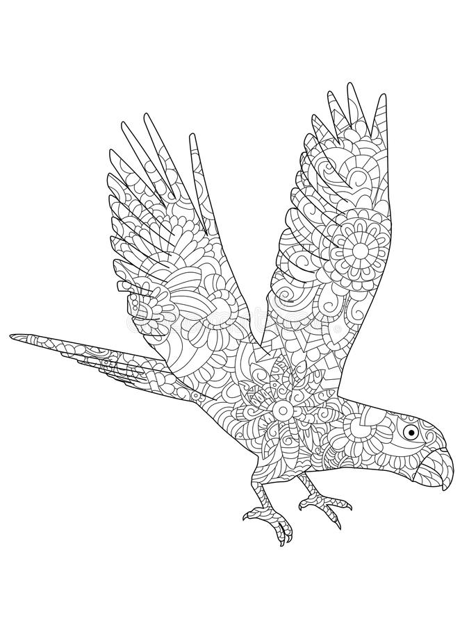 Vector Illustration Of A Parrot Ara Flying Coloring Book