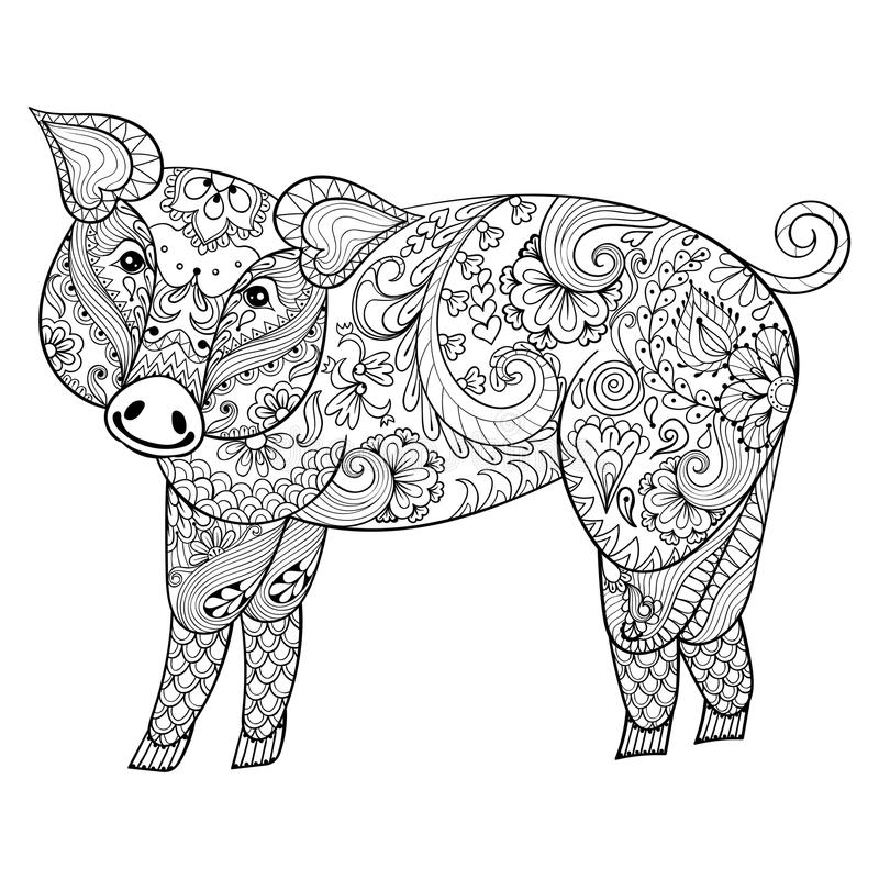 vector pig. zentangle pig illustration swine print for
