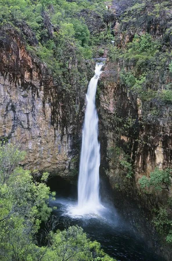 Wasserfall Australiens Queensland Im Regenwald Stockbilder