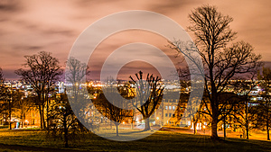 Bristol cityscape behind trees