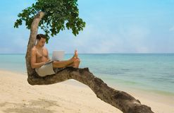 Person at the beach, sitting on a branch, working on his computer.