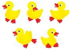 Ducklings vector Clipart Stock Vector Illustration of