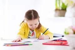 essay homework help