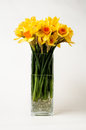 Daffodils In A Vase Stock Image - 39749401