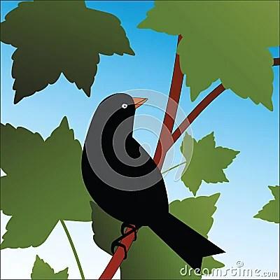 Bird Sitting On Branch In Tree Stock Image Image 11490471